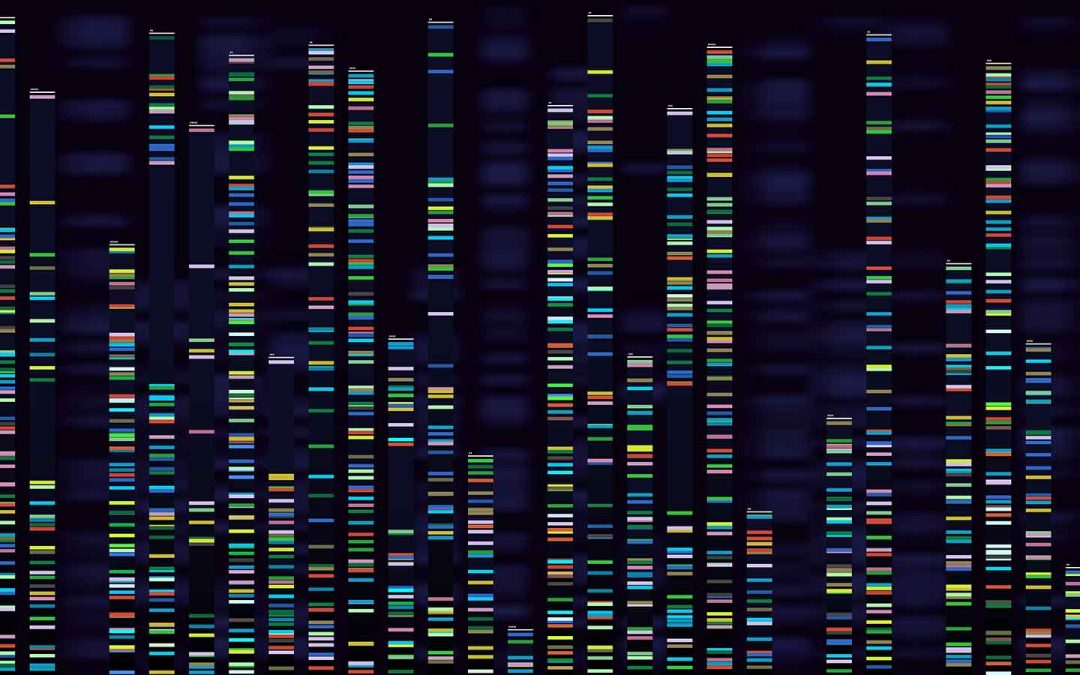 Comorbid epilepsy linked to gene repeats